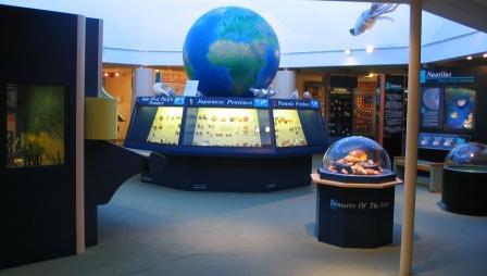 Muschelmuseum Sanibel