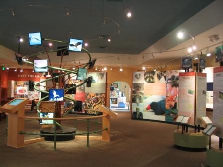 CROW Klinik für wildlebende Tiere auf Sanibel