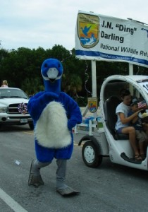 Vogel in Parade auf Sanibel