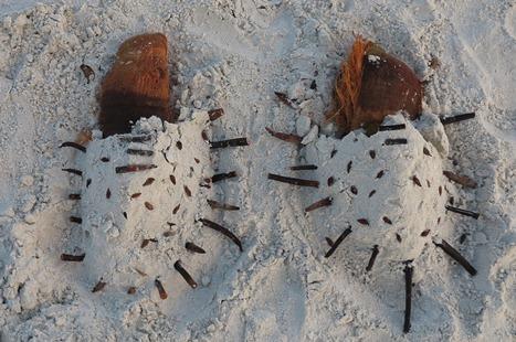 Sandrätsel