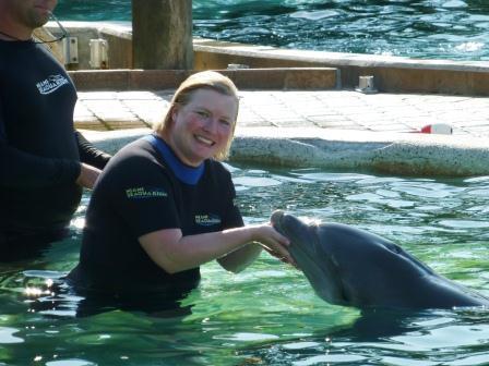 Delfinschwimmen Miami