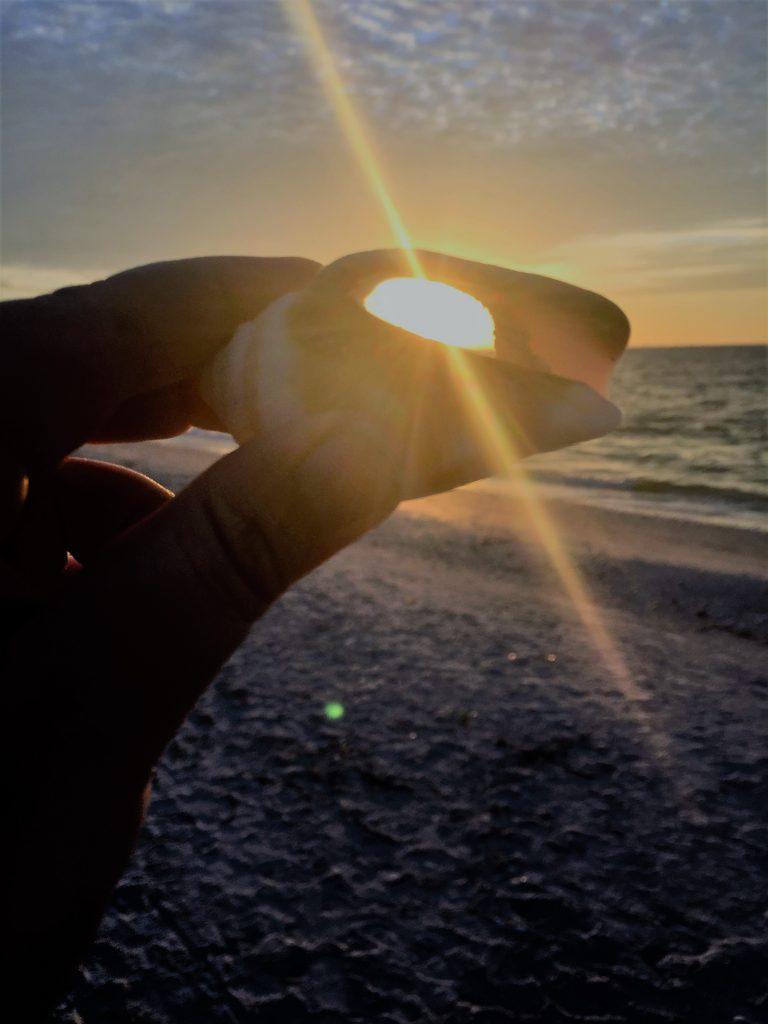 Sonnenaufgang durch Muschel fotografiert