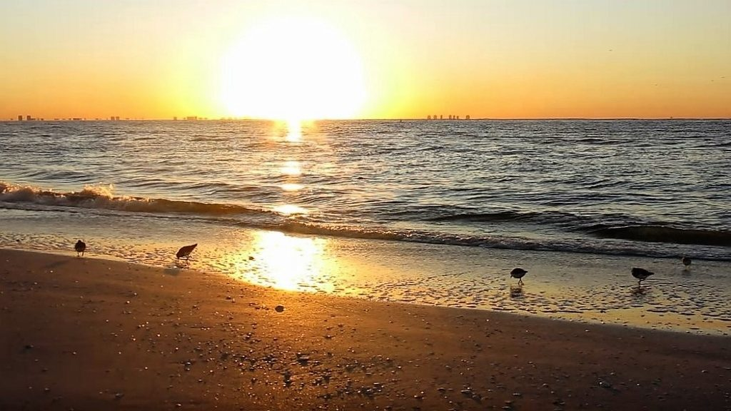 Sonnenaufgang Sanibel